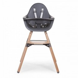 Baby chair - Anthracite with rollbar